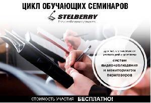 ГК ЭЛИКС приглашает на семинар «Mystery STELBERRY» 7 февраля